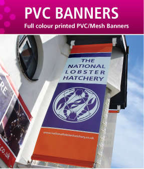 PVC Banners